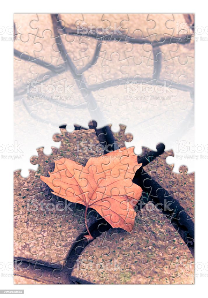 Isolated dry leaf on the ground - concept image in jigsaw puzzle shape stock photo