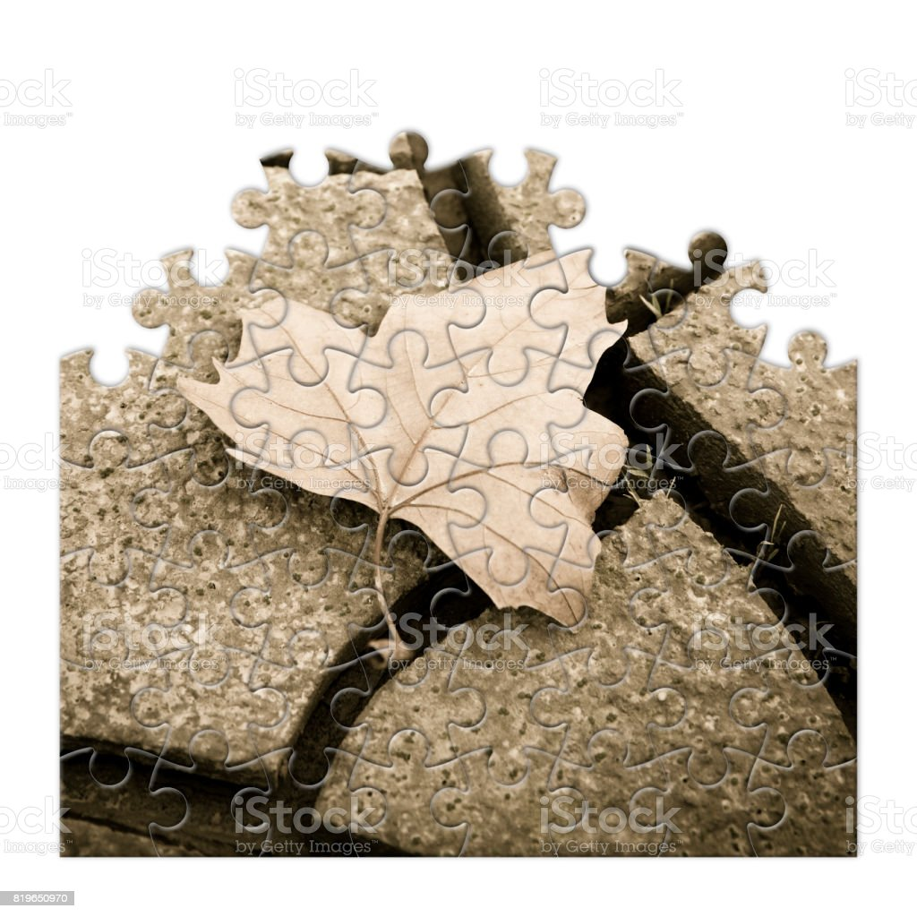 Isolated dry leaf on the ground - concept image in puzzle shape stock photo