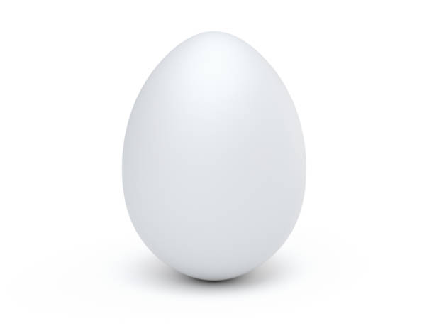 Isolated Egg stock photo