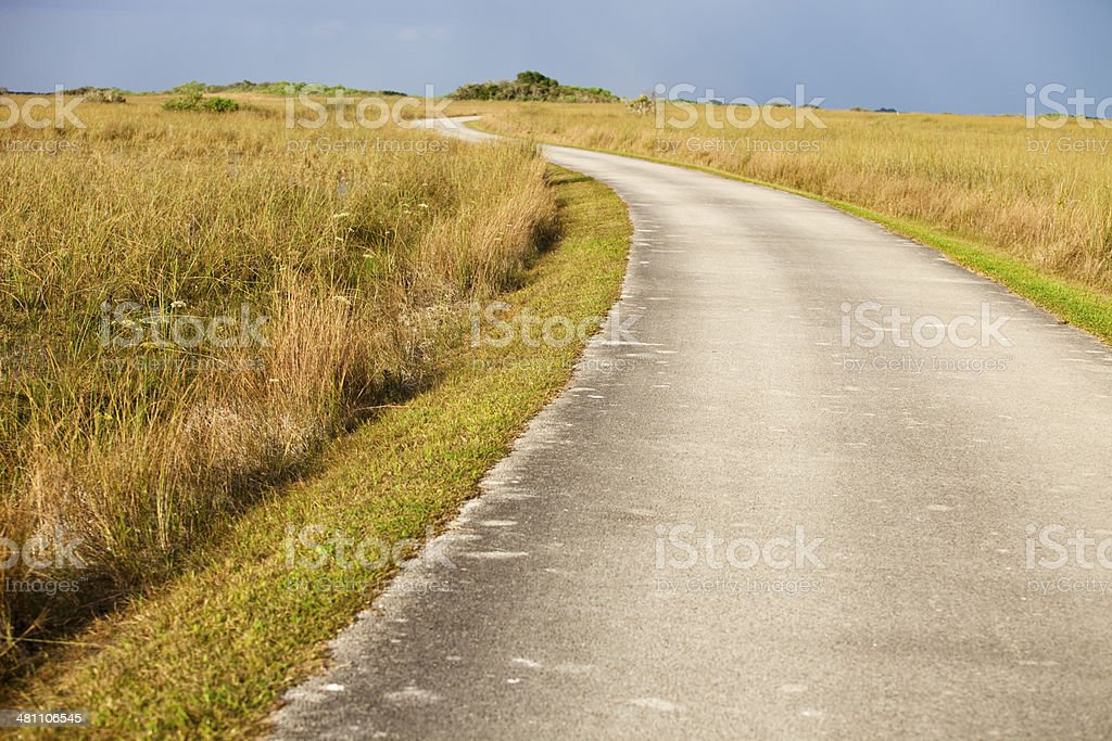 Isolated empty road through the Florida Everglades royalty-free stock photo