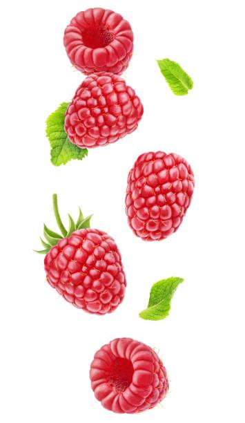 isolated falling raspberries - framboesa imagens e fotografias de stock