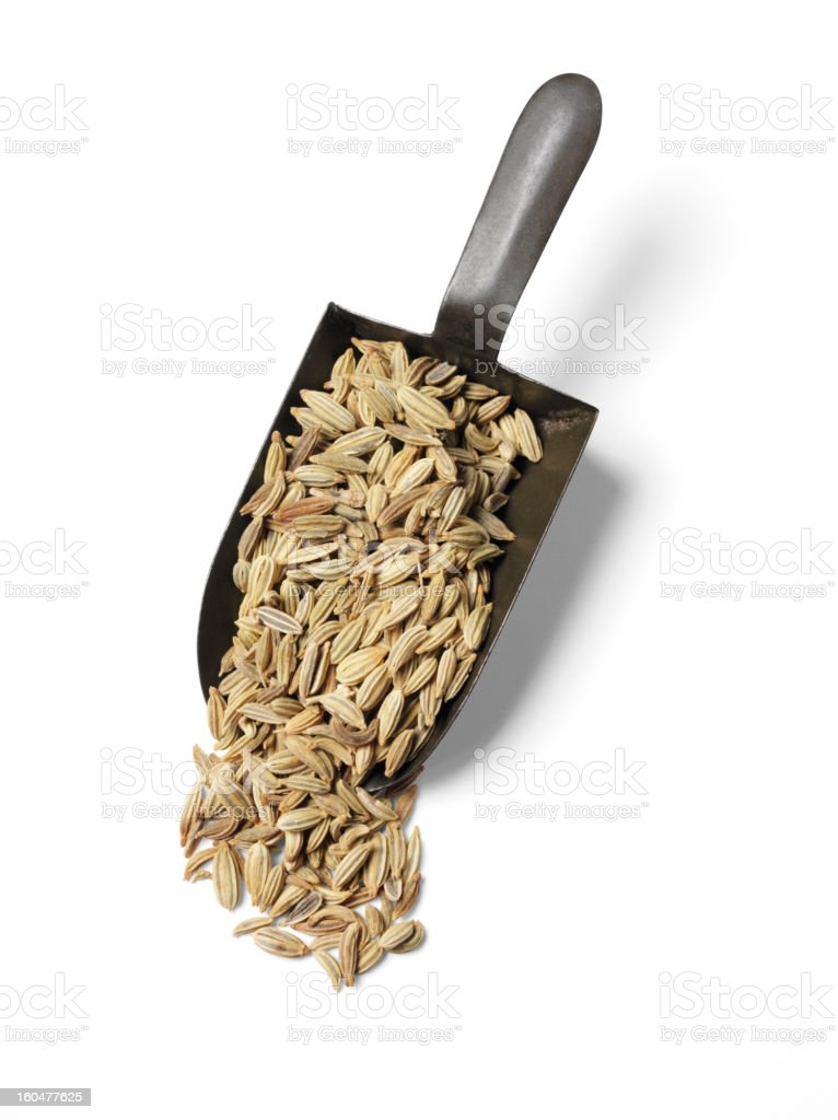 Isolated Fennel Seeds royalty-free stock photo