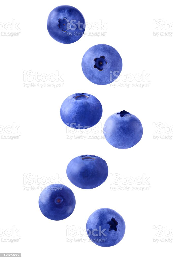 Isolated flying blueberries - foto stock
