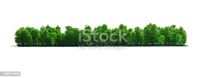istock Isolated Forest Stripe 183579408