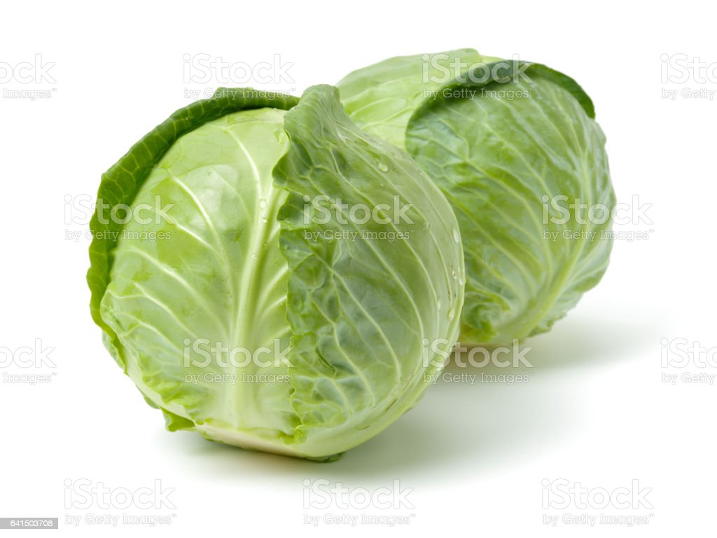Isolated fresh   Green cabbage   on white background stock photo