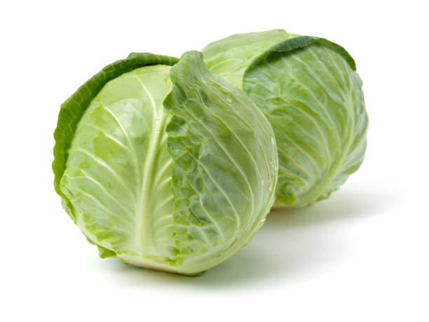 Isolated fresh   Green cabbage   on white background – zdjęcie