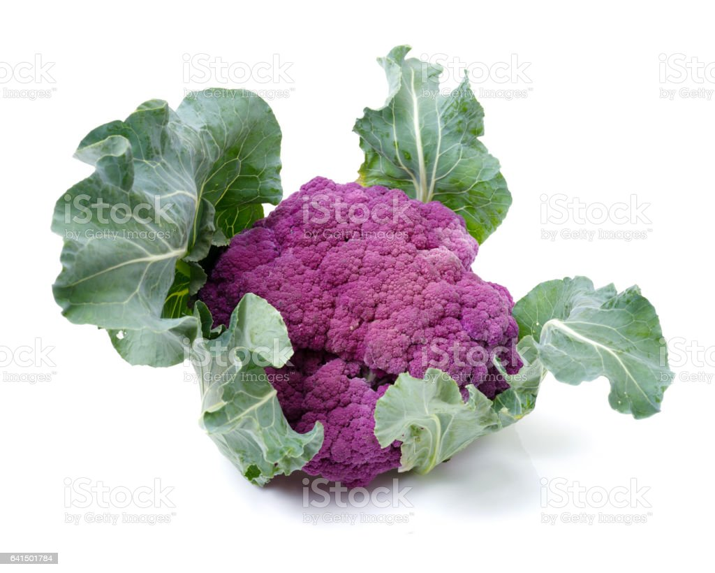 Isolated fresh lila cauliflower   on white background stock photo