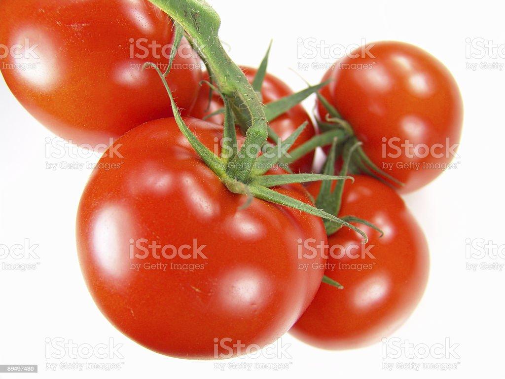 Isolato pomodori freschi con aste foto stock royalty-free