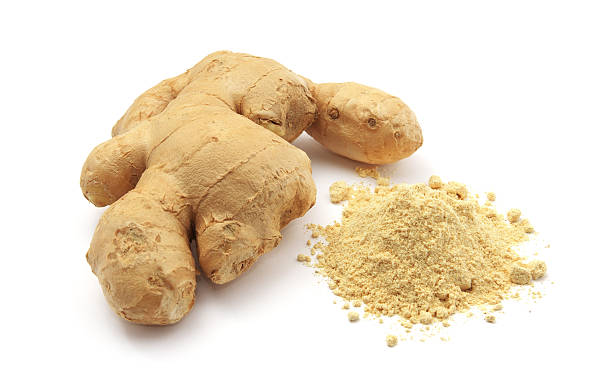 Isolated ginger. stock photo