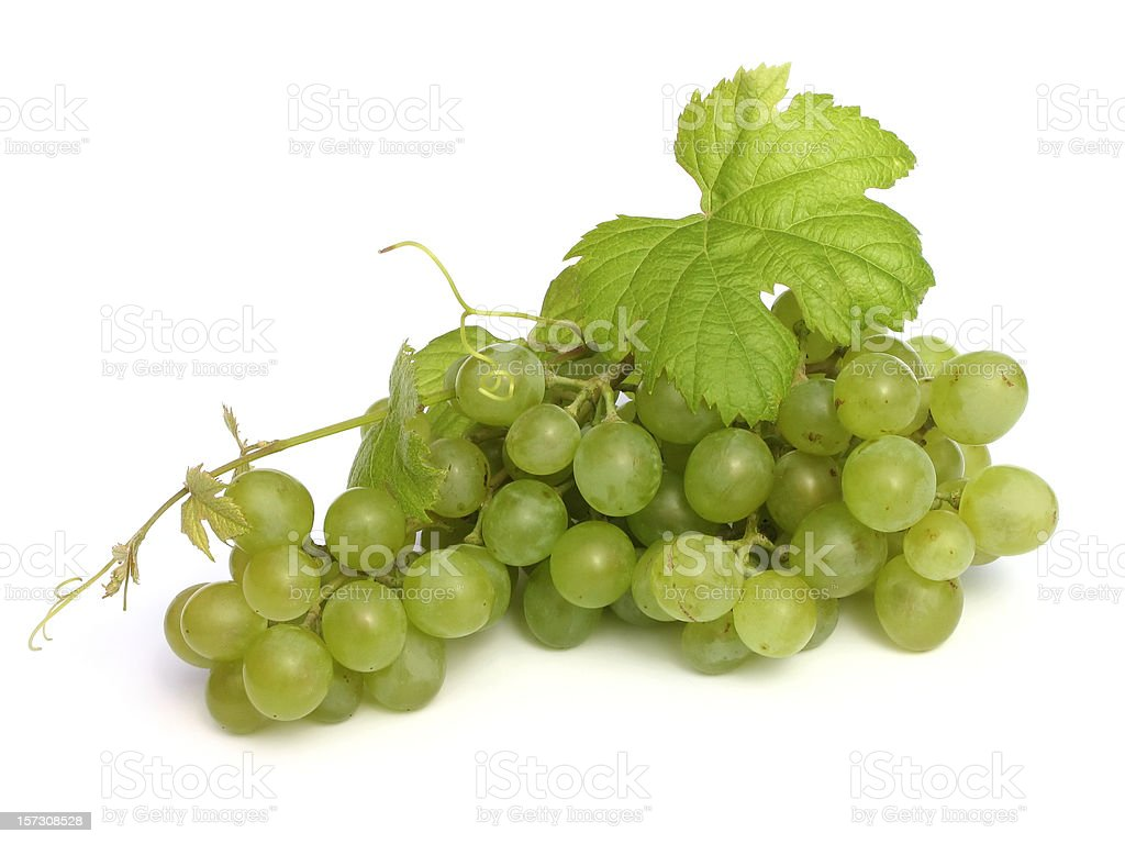 isolated grape royalty-free stock photo