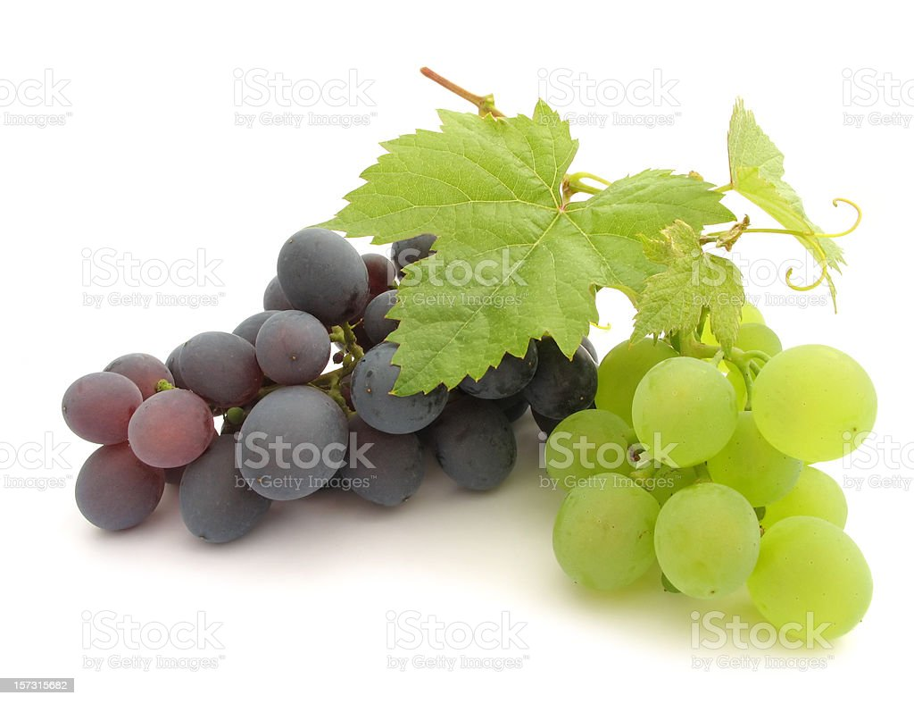 isolated grape stock photo