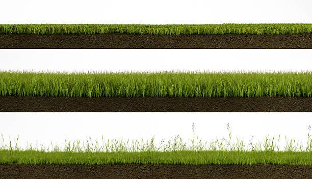aislado de hierba - pedazos de tierra fotografías e imágenes de stock