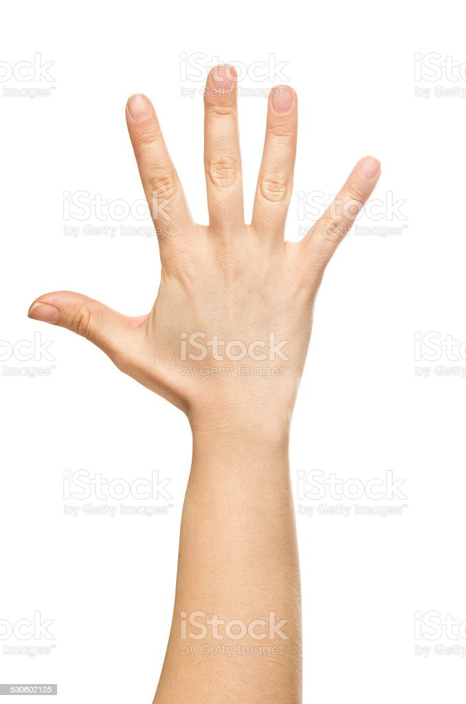 isolated hand, number five stock photo