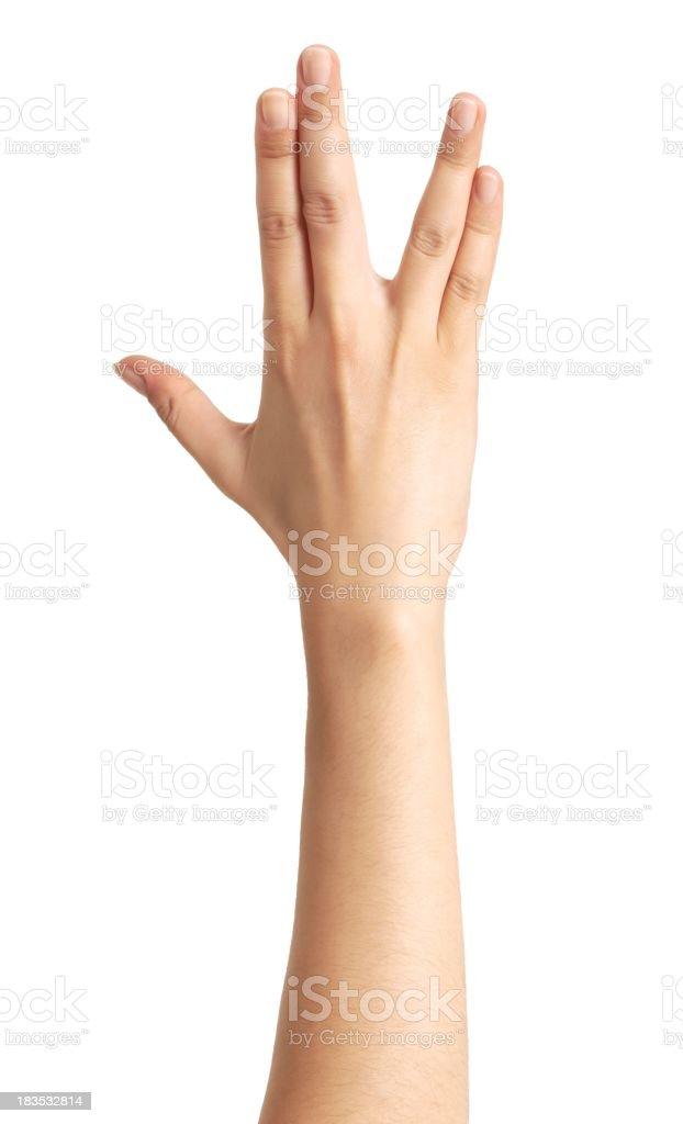 isolated hand royalty-free stock photo