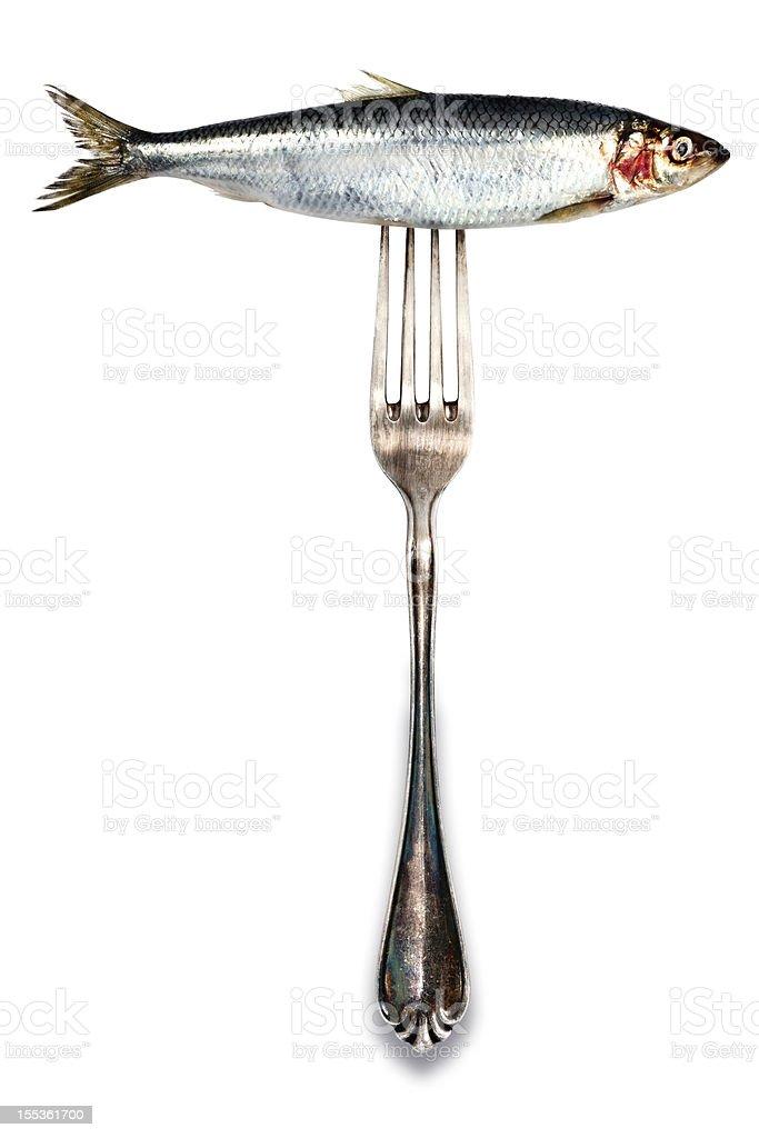 Isolated Herring on Fork stock photo