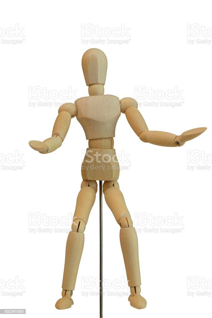 Fantastisch Weibliche Anatomie 3d Modell Galerie - Anatomie Ideen ...