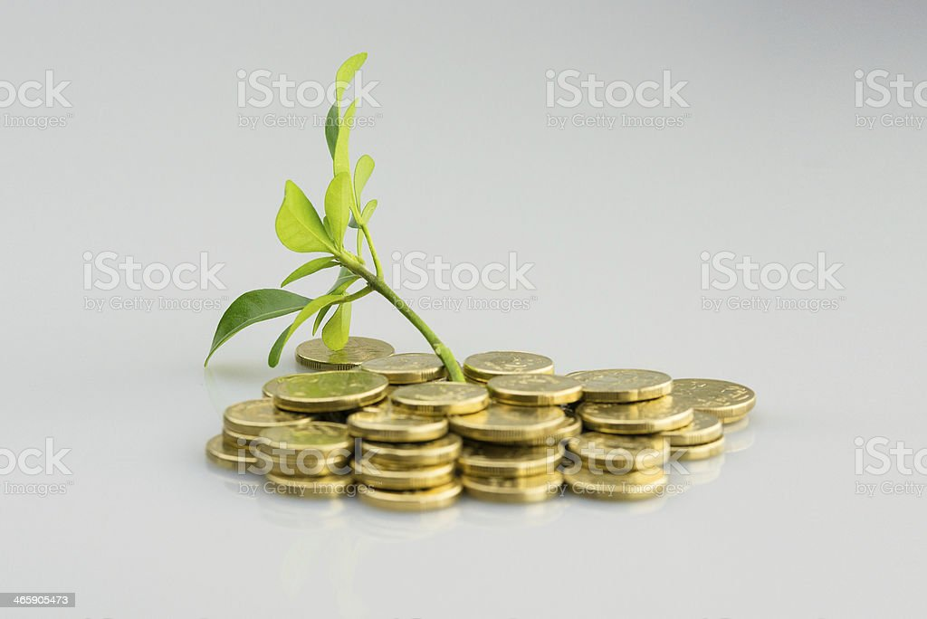 Isolated image of carefully stacked Australian coins stock photo