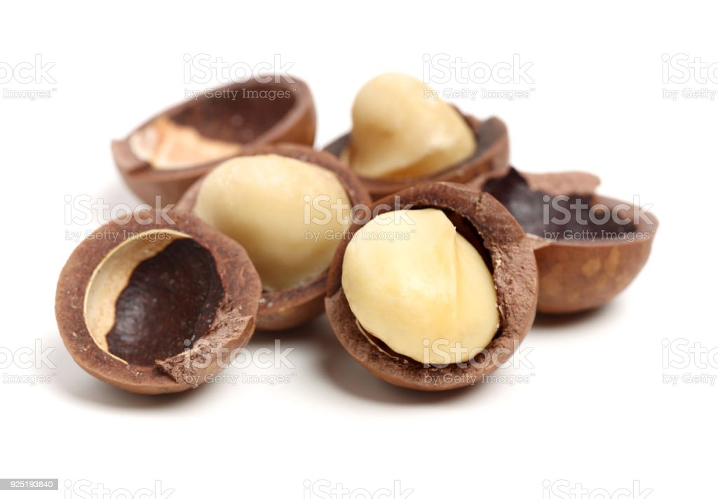Isolated macadamia nuts on white background stock photo