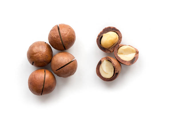 Isolated macadamia nuts. Macadamia nuts. Top view. macadamia nut stock pictures, royalty-free photos & images