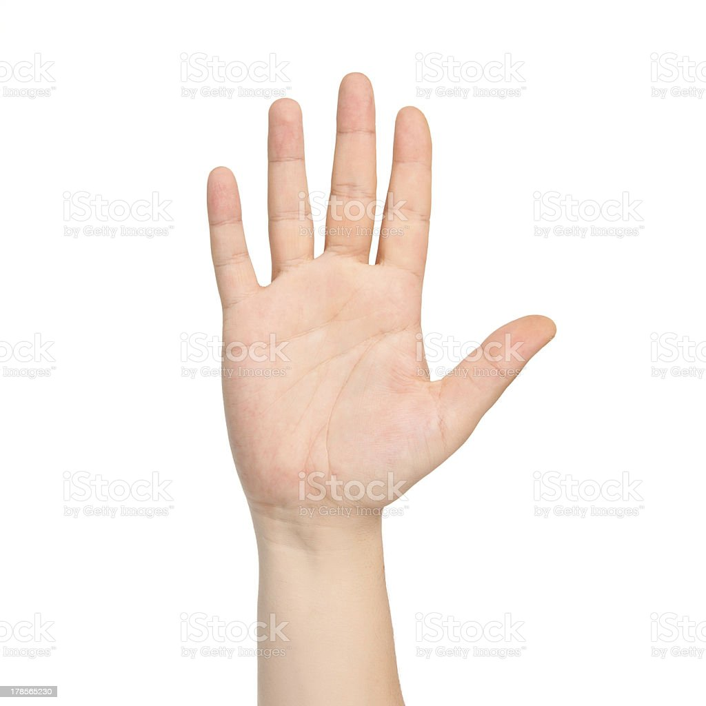 isolated male hand showing the number five stock photo