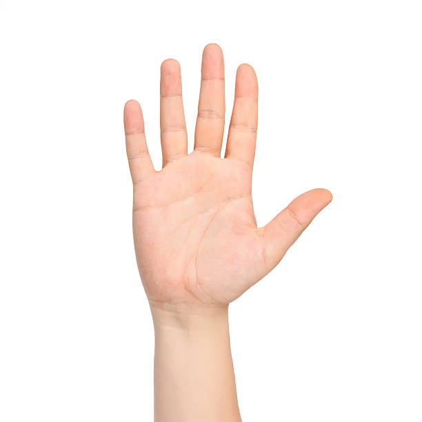 isolated male hand showing the number five isolated male hand showing the number five stop single word stock pictures, royalty-free photos & images