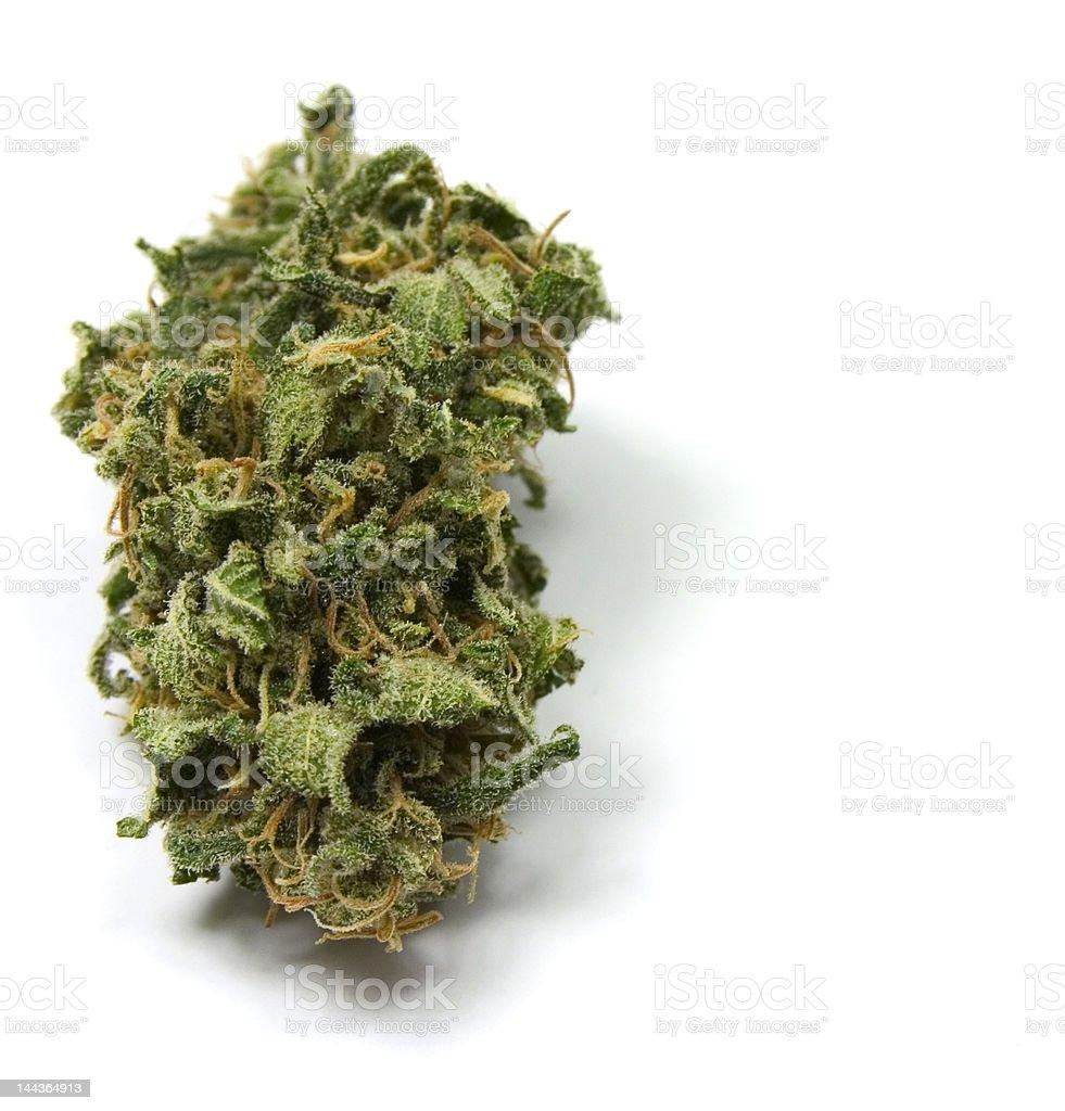 Isolated Marijuana stock photo