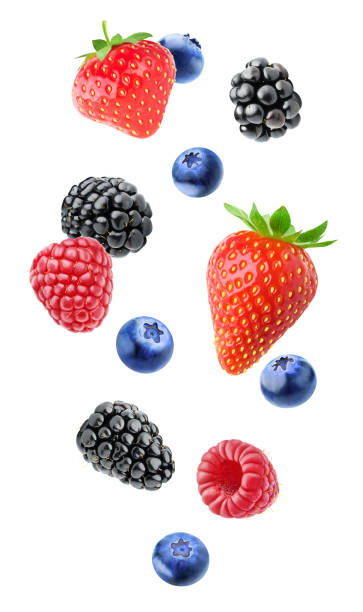 isolated mixed berries - berry stock photos and pictures
