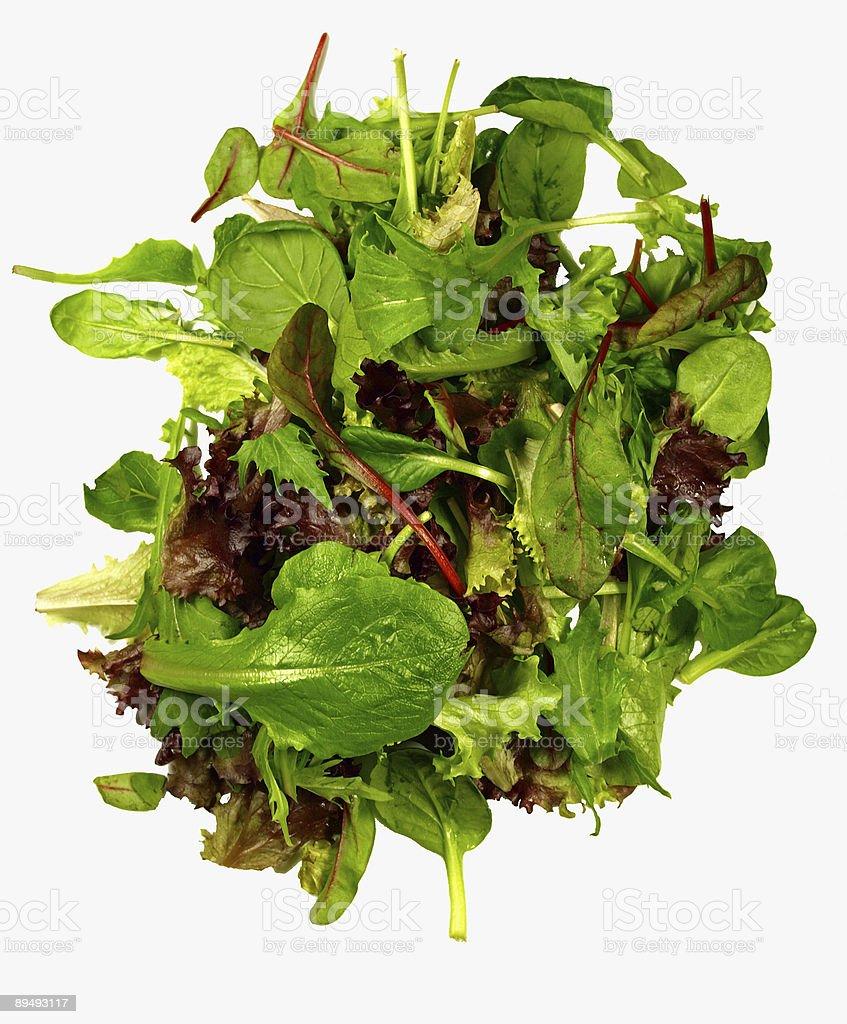 isolated mixed lettuce stock photo