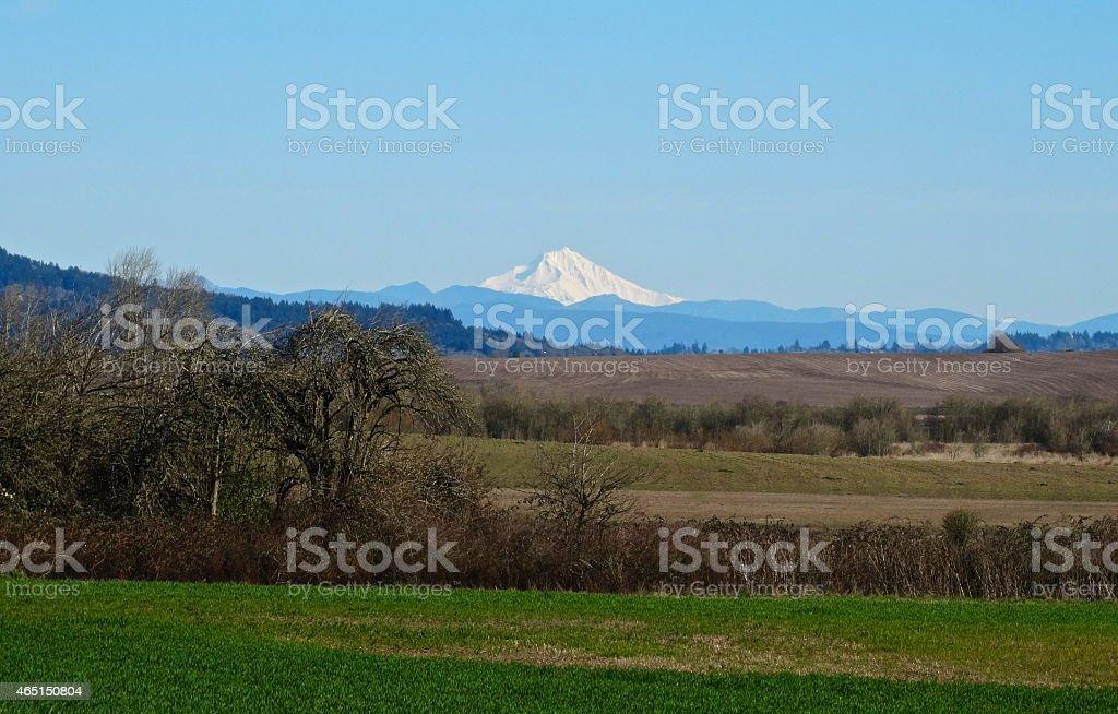 Isolated Mt. Jefferson stock photo