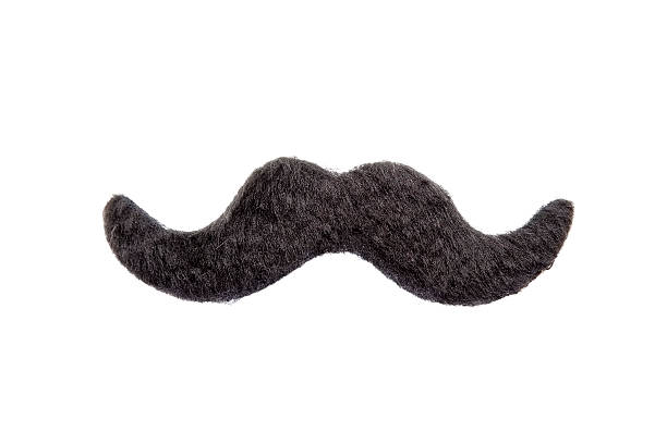 Isolated Mustache Mustache isolated on a white background mustache stock pictures, royalty-free photos & images