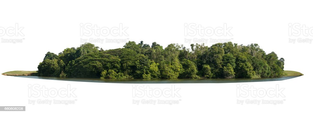 isolated natural park with green tree landscape royalty-free stock photo