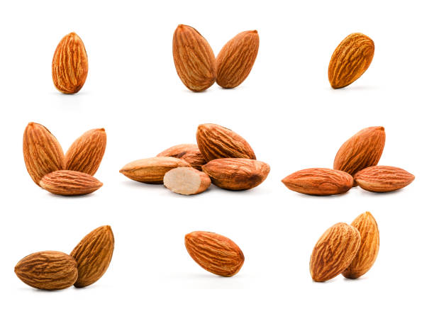 isolated of almonds nut collection on white background. clipping path -image. - amendoas imagens e fotografias de stock