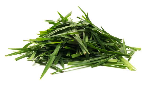 isolated pile of grass - filo d'erba foto e immagini stock
