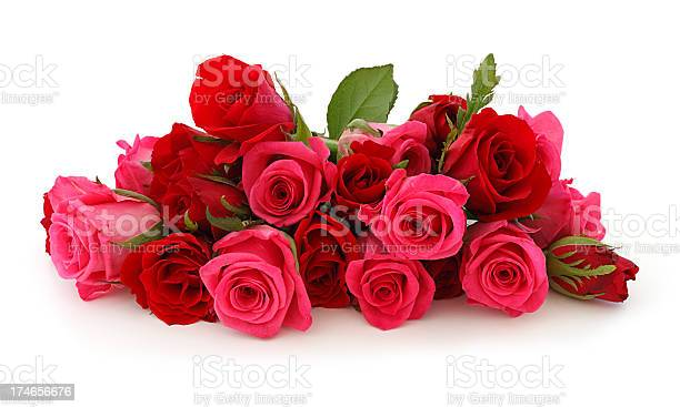 Isolated pink roses bouquet picture id174656676?b=1&k=6&m=174656676&s=612x612&h=p8za2zjjh7pqavrsomhekazaueodygzim2bct0wpfgy=