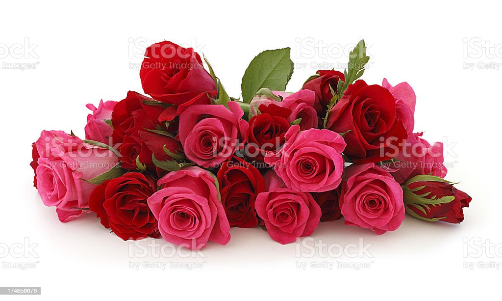 Isolated Pink Roses Bouquet stock photo