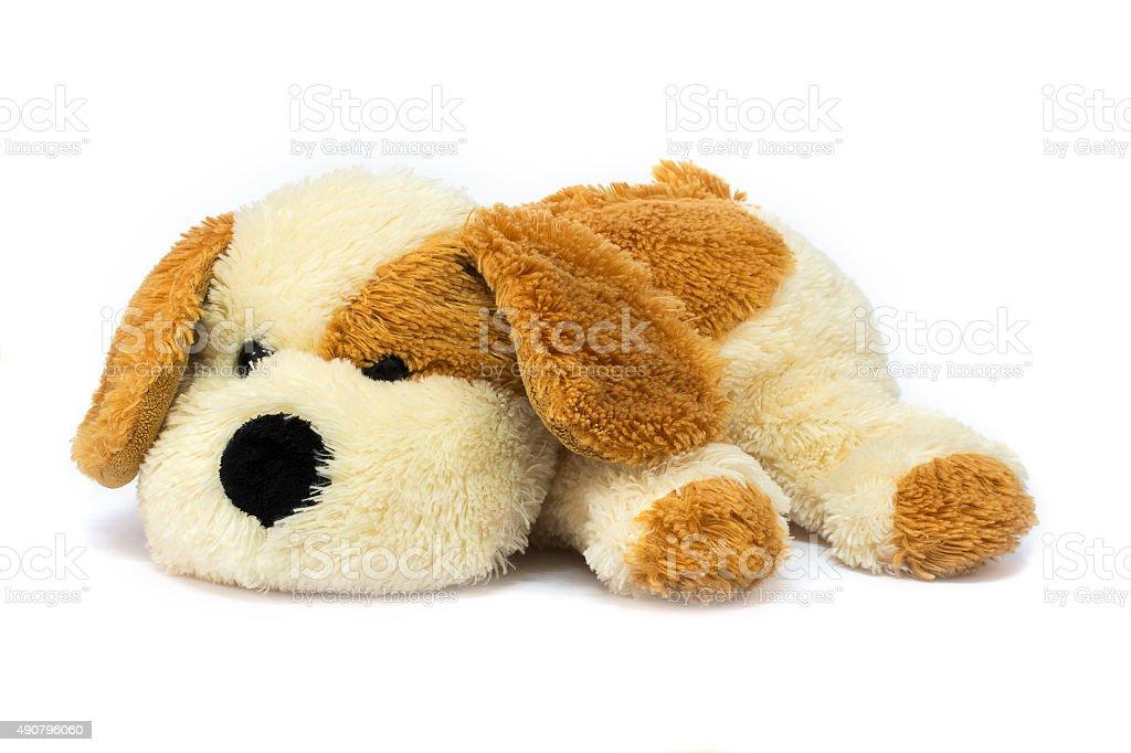Isolated plush toy dog on white background stock photo