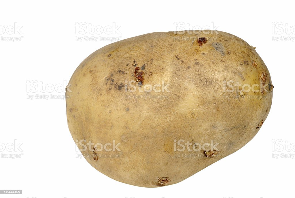 Isoliert, Kartoffel Lizenzfreies stock-foto