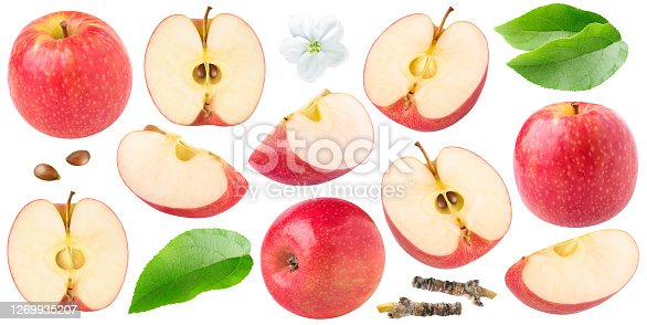 Isolated red apples. Collection of whole and cut  red apples of different shapes, leaves and apple blossom isolated on white background