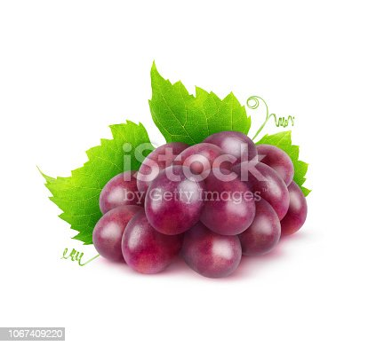Isolated fruit. Bunch of red grapes with a leaf isolated on white background with clipping path