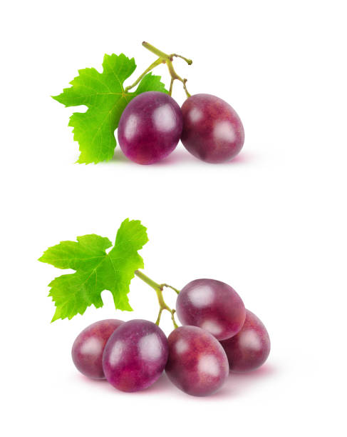 raisins rouges isolés - raisin photos et images de collection