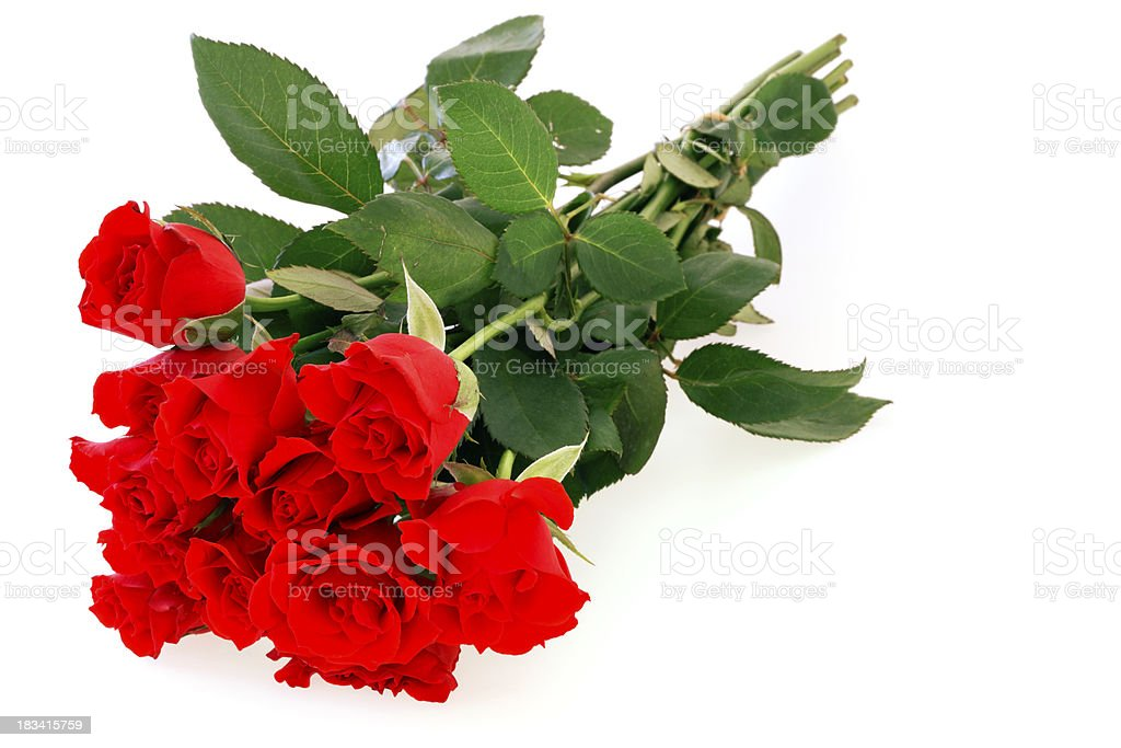 Isolated Red Roses Bouquet royalty-free stock photo