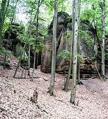 istock isolated sandstone rocks with deciduous trees around 971377344