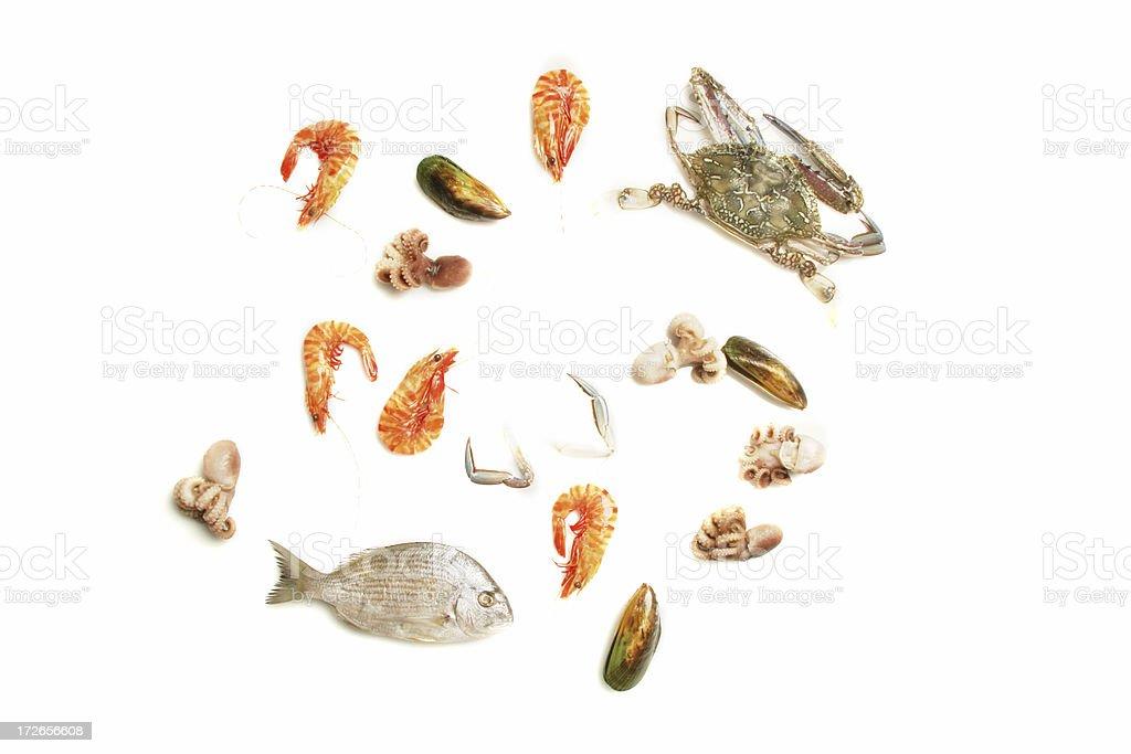 Isolated seafood stock photo