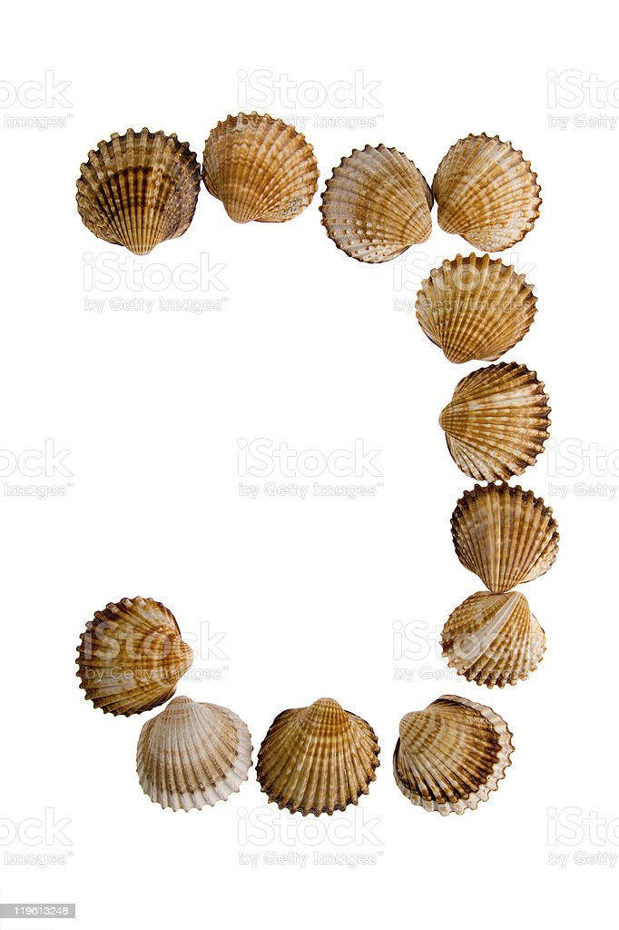 isolated shell letter J royalty-free stock photo