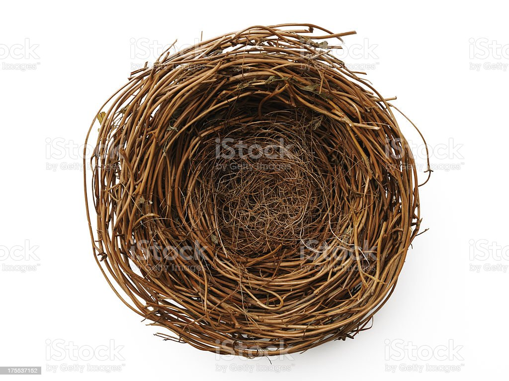 Isolated shot of blank bird's nest on white background stock photo