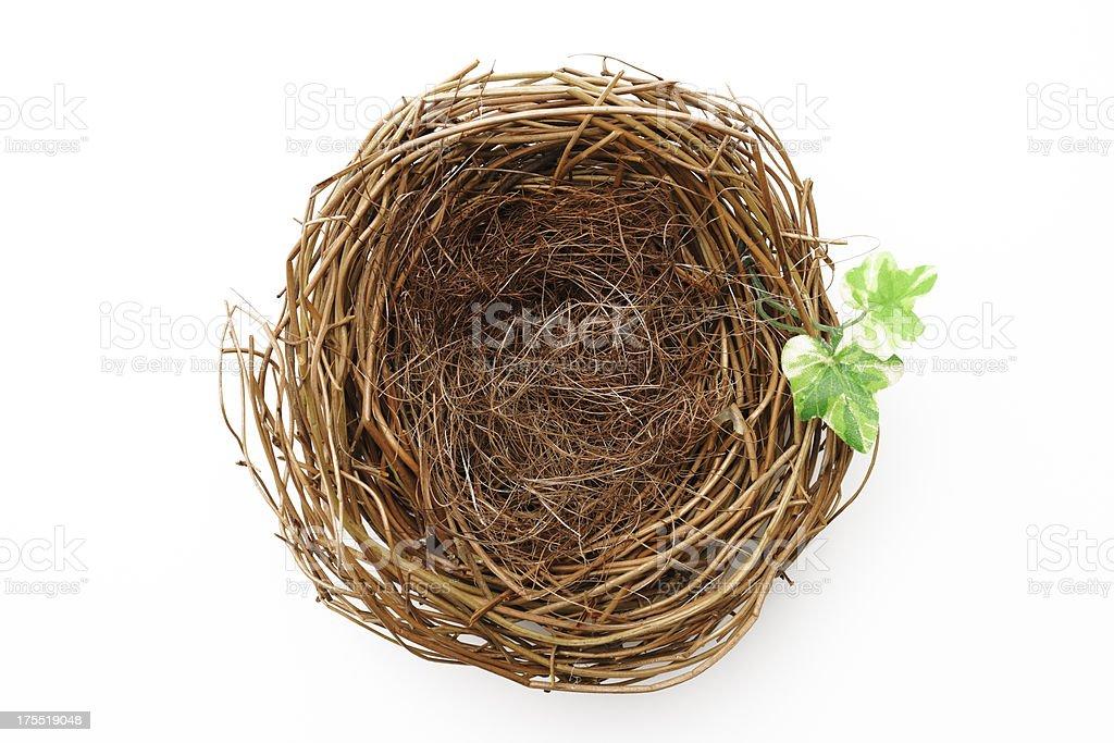 Isolated shot of empty bird's nest with leaf on white stock photo