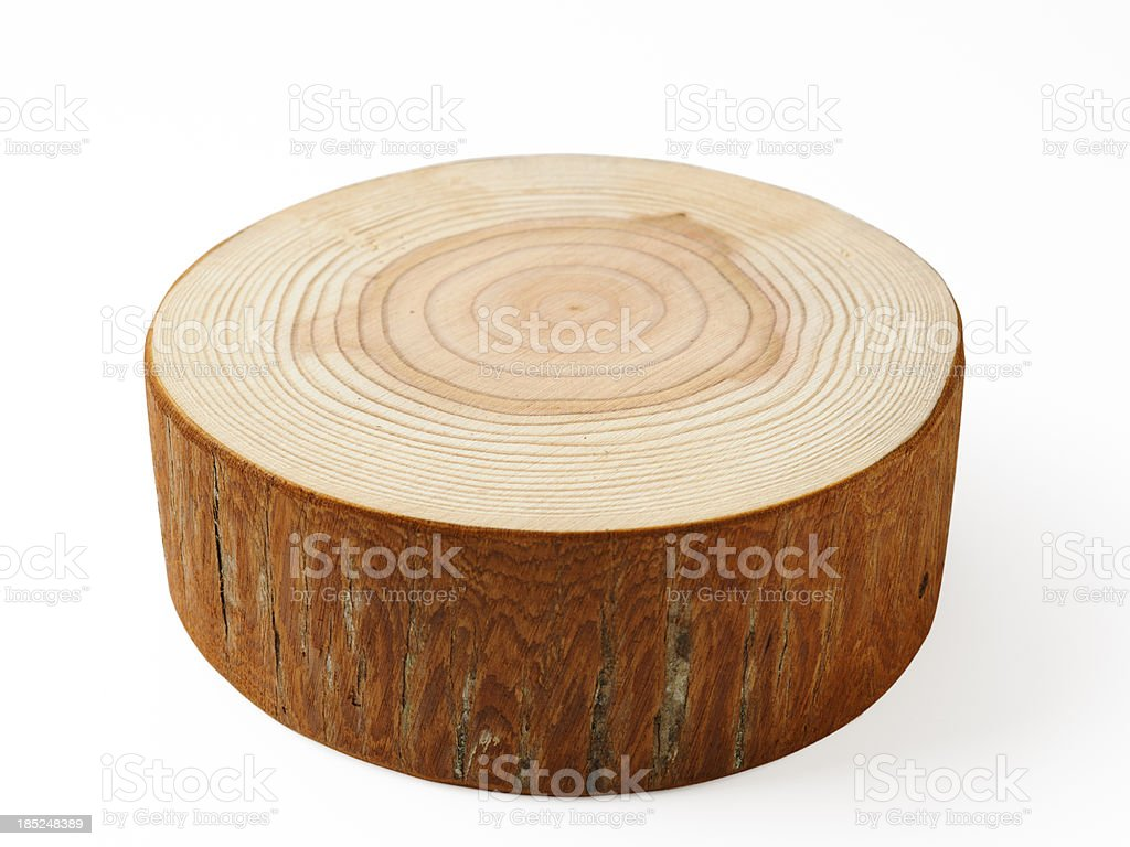 Isolated shot of tree cross section on white background stock photo