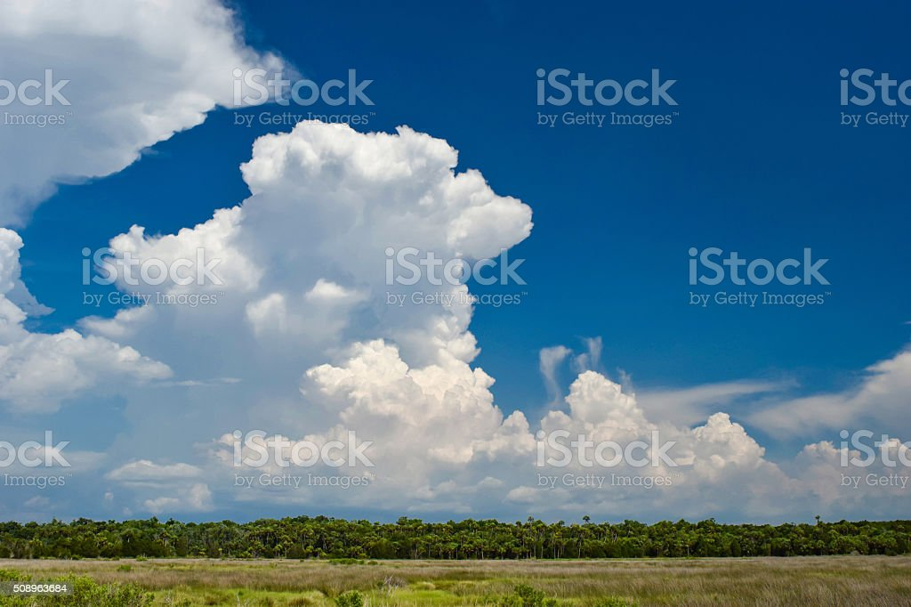 Isolated Thunderstorms over Wetlands stock photo