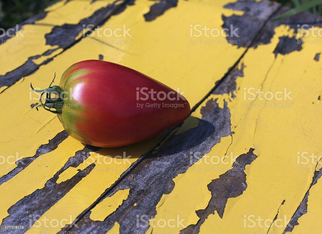 Isolated Tomato royalty-free stock photo