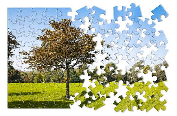 isolated tree in a green meadow - environmental conservation concept image in jigsaw puzzle shape - jigsaw puzzle stock photos and pictures